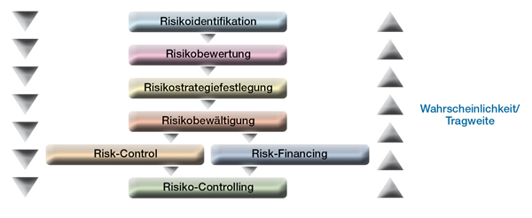Diagramm Risk Management2008